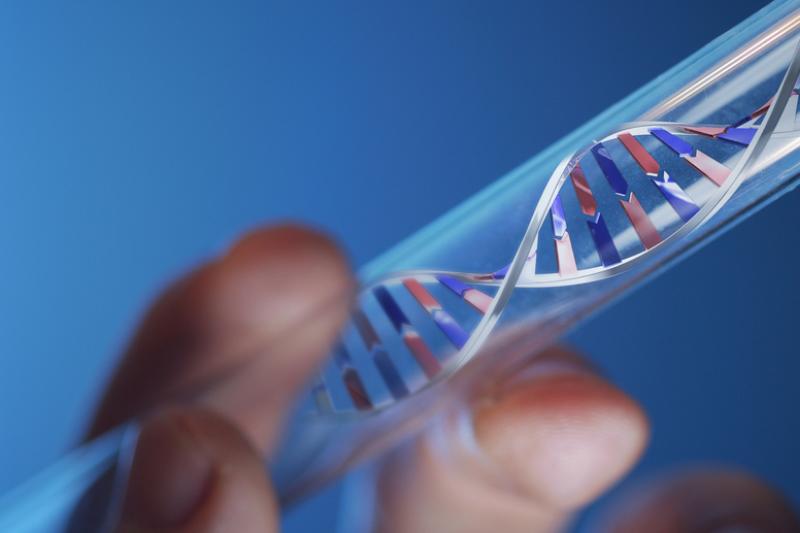 Kubiniame milimetre DNR galima išsaugoti 704 terabaitus informacijos