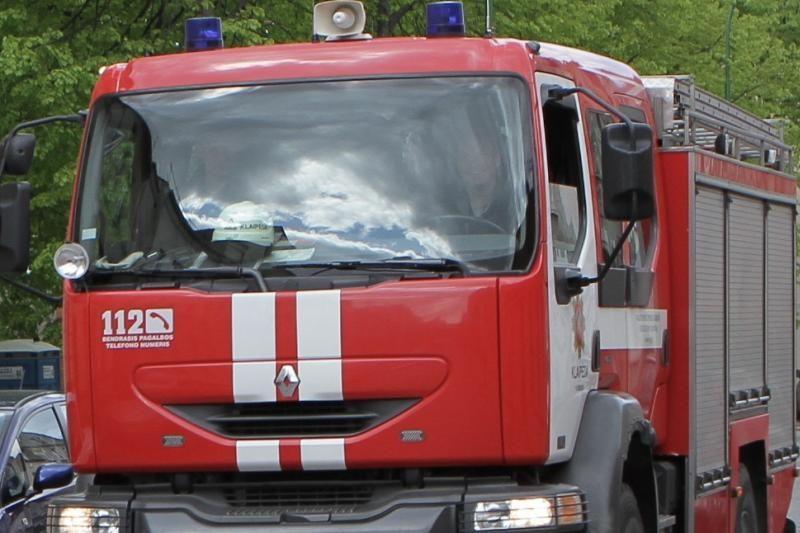 Uostamiesčio ugniagesiai skubėjo šalinti pavojingai pasvirusio medžio