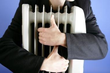 Vienas Seimo komitetas parėmė Prezidentės siūlymus Šilumos ūkio įstatymui, kitas - ne