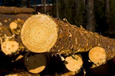 """""""Vakarų medienos grupės"""