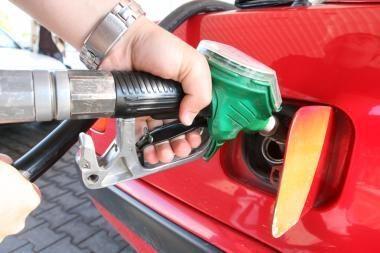 """""""Lukoil"""": degalų kainos - valstybės ir Mažeikių nuopelnas"""