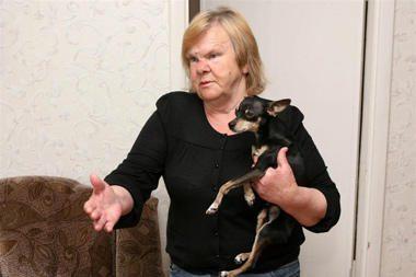 Šunelis be bilieto – bauda šeimininkei