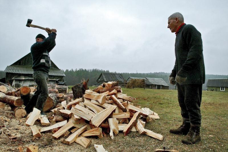 Lietuvoje didėja malkų skaldyklių paklausa