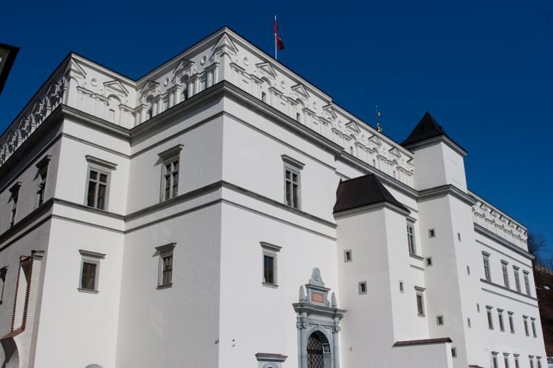 A.Gelūnas tikisi ekspertų įvertinimo dėl būtinų darbų Valdovų rūmuose