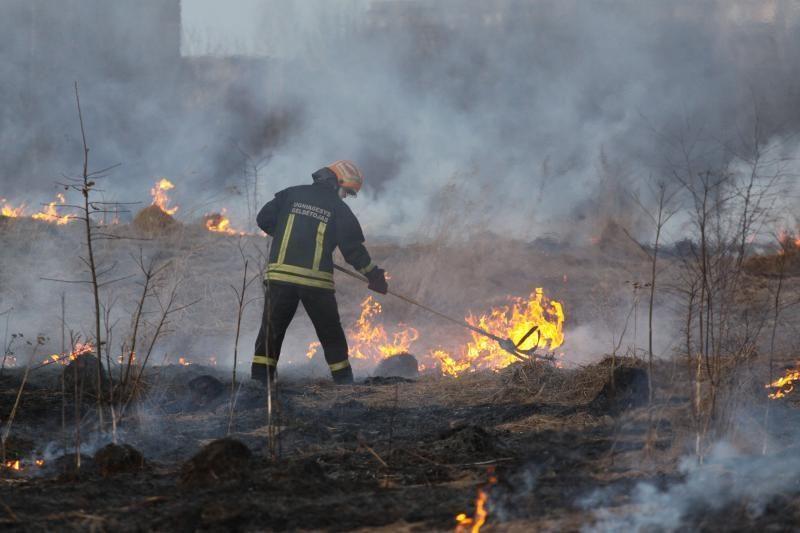 Vilniaus rajone dega du pastatai ir žolė aplink juos