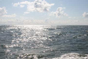 Nesutarimai stabdo naftos paiešką jūroje