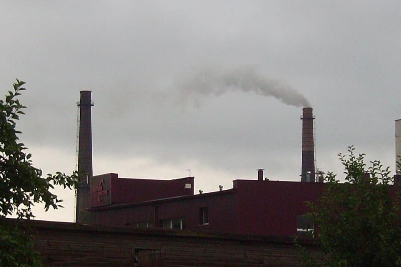 Kurios Lietuvos elektrinės labiausiai teršia aplinką?