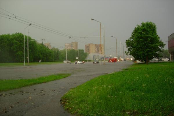 Smarki liūtis Kaune skandino miestą (papildyta)