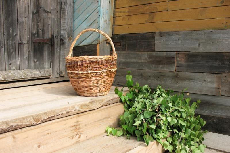 Ar leidžiama Lietuvos miškuose skinti beržų, ąžuolų ar kitų medžių šakas vantoms gaminti?