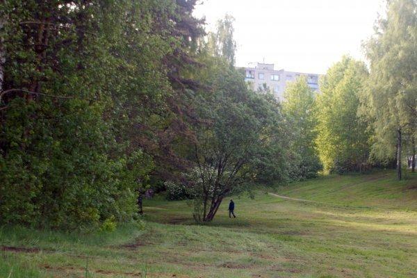 Vilniuje, Pasakų parke, pedofilas išprievartavo mergaitę (papildyta)
