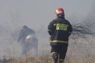 Šilutės r. nukentėjo žolės degintojas