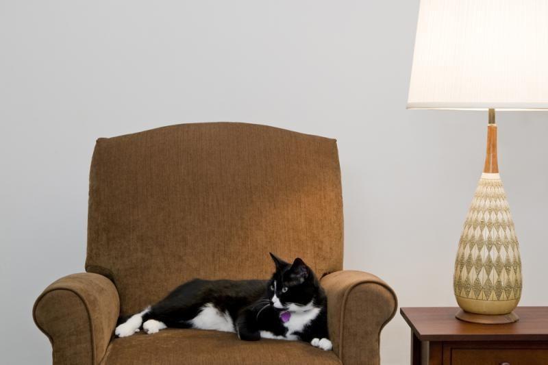 Kam pirkti baldus, jeigu juos galima gauti veltui?