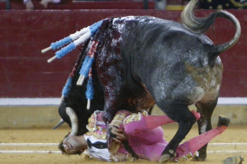 Ispanų matadoras po siaubingų sužalojimų išgyveno