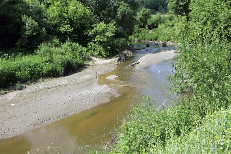 Aplinkosaugininkai: Jiesios vanduo yra švarus