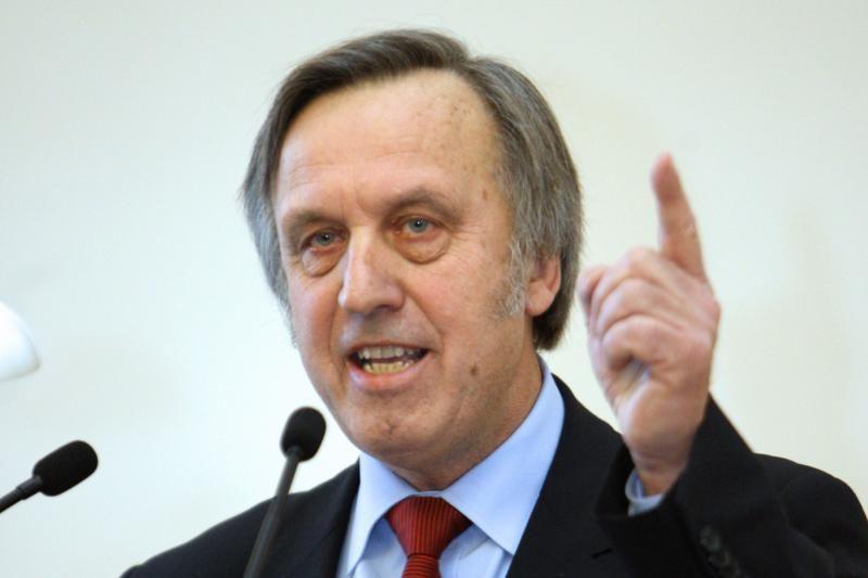 Nepartinis demokratinis judėjimas pirmininku išrinko P.Gylį