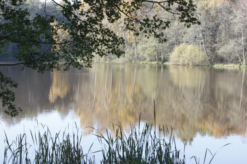 Mumlaukio ežero išvalymas sukėlė nepasitenkinimą