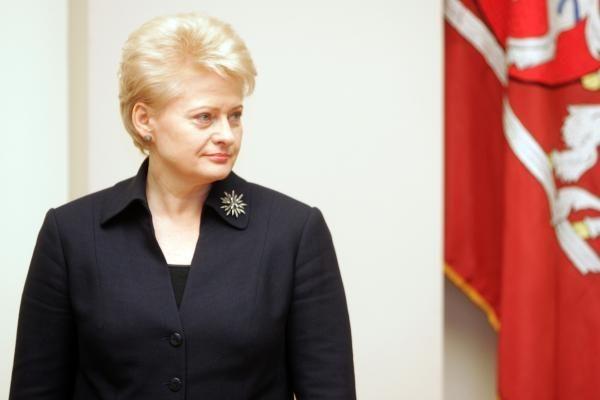 JAV lieka strategine Lietuvos partnere, Prezidentė tam neprieštarauja