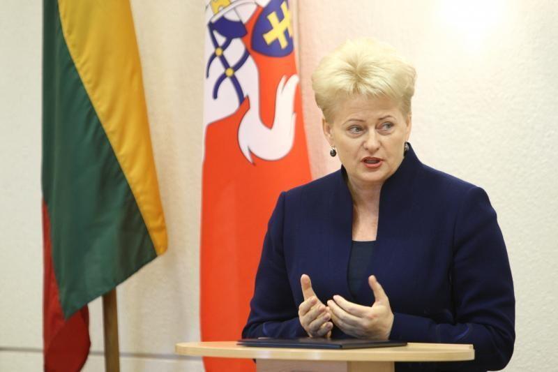 D.Grybauskaitė: turime kurti daugiau alternatyvių energijos šaltinių