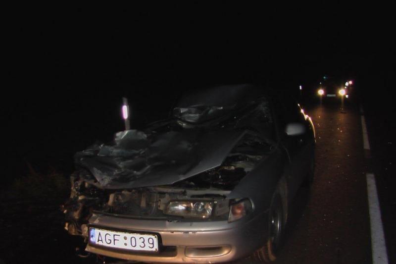 Po avarijos kumelę automobilis vežė ant stogo