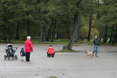Dar šiemet prasidės poilsio parko atgaivinimas