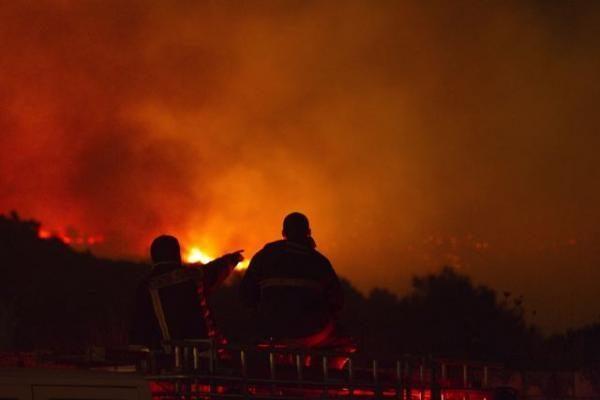 Izraelio miškų gaisras užgesintas