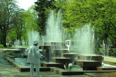 Motinos dienos proga – atgijęs fontanas