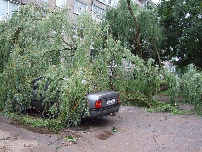 Nuo gamtos stichijos nukentėjosios savivaldybės prašo pagalbos