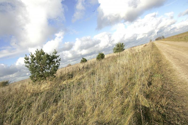 Pajudėjo žemės susigrąžinimas Vilniaus krašte