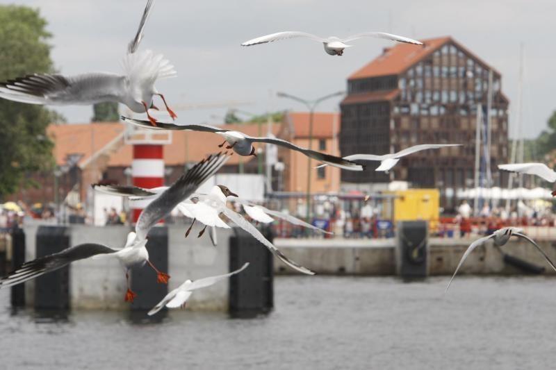 Pasaulinės turizmo dieną Klaipėdoje – nemokami pažintiniai renginiai