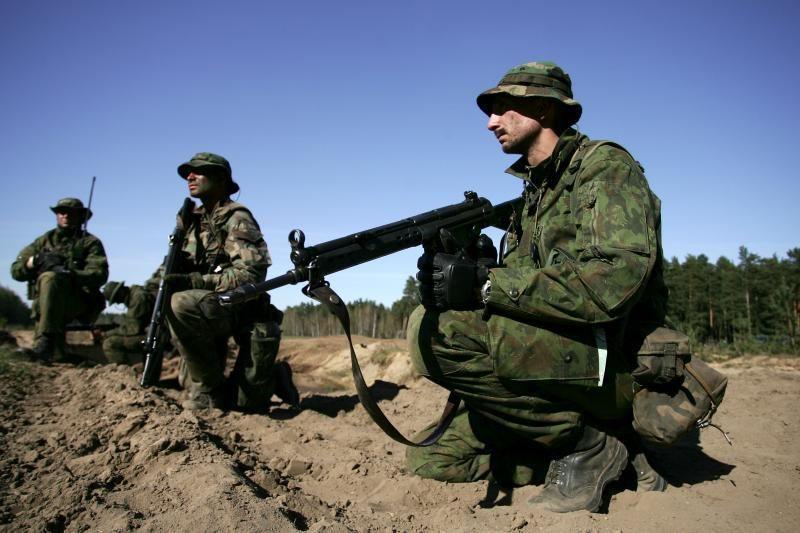 Ministrė: jei gynybos finansavimas neaugs, reiks mažinti kariuomenę