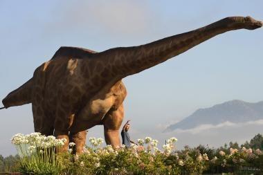 Atrasti didžiausi dinozauro pėdsakai Europoje