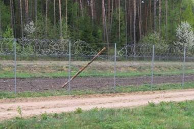 Baltarusis į Lietuvą per tvorą lipo mediniu rąstu
