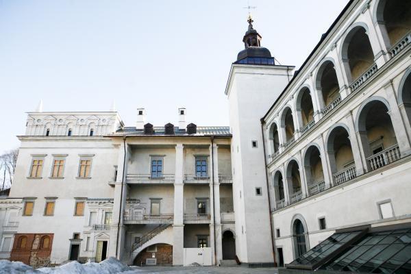 D.Kreivys: ieškoma teisinio sprendimo tęsti Valdovų rūmų statybas