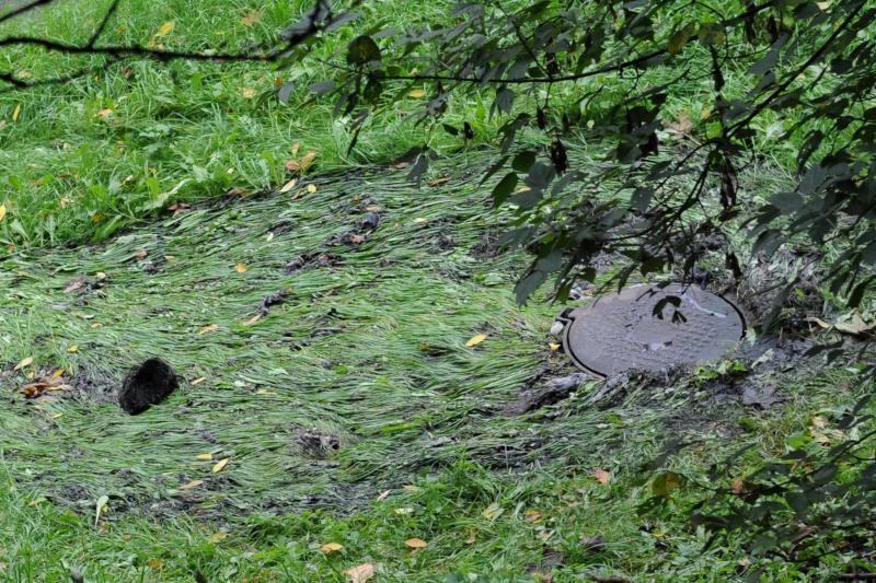 Vilniaus centre automobiliai važiavo per kanalizacijos balas