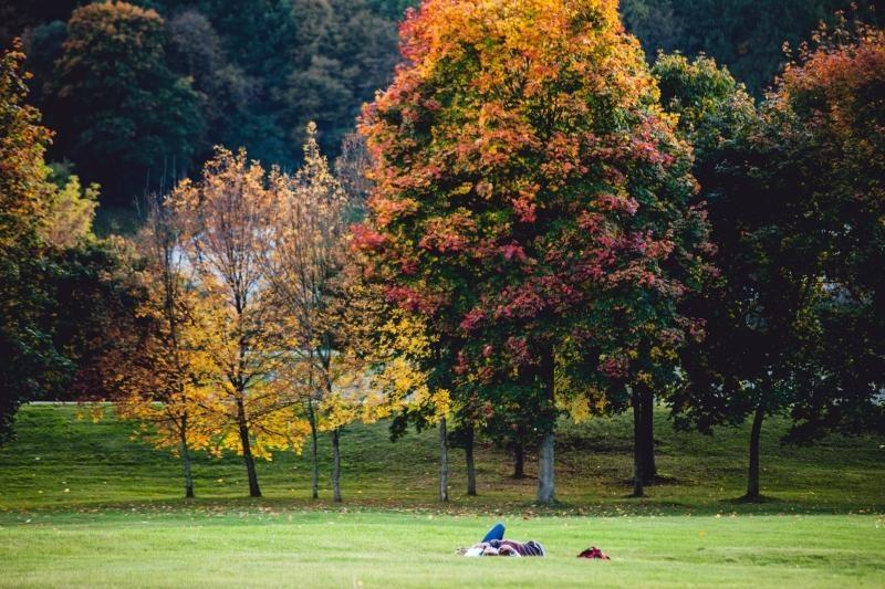 Savaitgalis bus lietingas ir rudeniškai vėsus