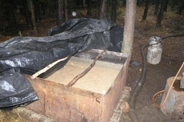 Pareigūnai miške aptiko keturias tonas raugo