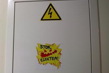 A.Sekmokas: elektra kitąmet gali brangti 1-2 centais