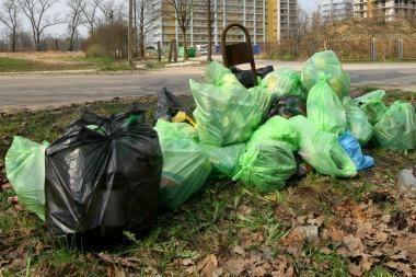 """Lietuvoje vyko švarinimo akcija """"Darom 2009"""""""