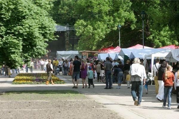 Festivalį