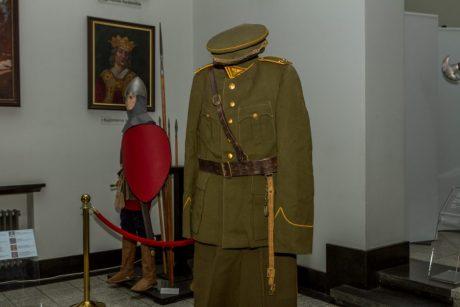 Karo muziejus gavo išskirtinį ir retą eksponatą iš Brazilijos