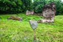 Lapės – jau seniai ne vien kolektyviniai sodai ir sąvartynas