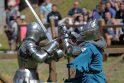 Riterių kovos Hanzos dienose