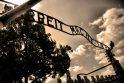 Lietuvių kilmės buvusiam Aušvico prižiūrėtojui gresia bausmė