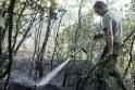 Panemunės šile išdegė hektaras miško paklotės
