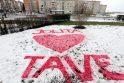 Klaipėdietei – meilės prisipažinimas ant sniego