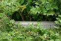 Vandalai nusiaubė Milikonių kalno apžvalgos aikštelę