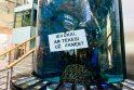 Pasiūlymas tekėti – tarp akvariumo ryklių