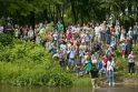 Tradicinės ančiukų lenktynės šiemet – rekordinės