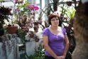 Oranžerijos augalams kepinančios dienos – laukiamiausios