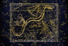 Dienos horoskopas 12 zodiako ženklų <span style=color:red;>(birželio 24 d.)</span>